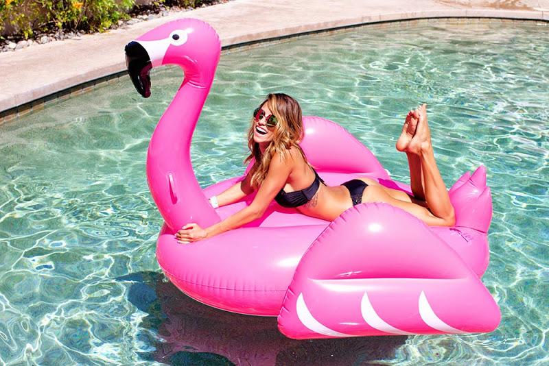 bikini-girl-hot-flamingo-pink-pool-billiard-girls-nude-playing-with-small-penis
